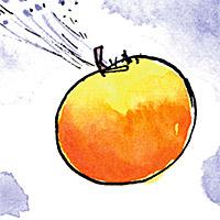 Het leven van Roald Dahl - 1961 - Reuzenperzik